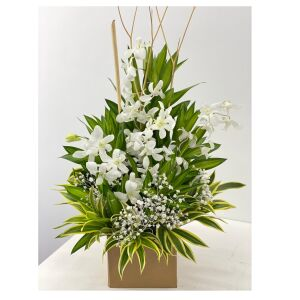 Special orchid box (white)